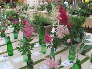 Horticultural display